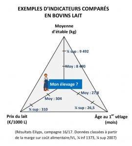 (Résultats Eilyps, campagne 16/17. Données classées à partir de la marge sur coût alimentaire/VL, ¼ inf 1373, ¼ sup 2007)