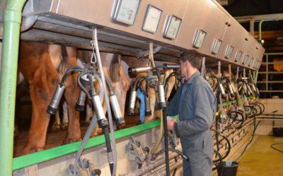 Comment améliorer les performances de production laitière ?
