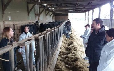 Formations éleveurs : approfondissez vos connaissances en parage, génisse, bio et nutrition