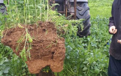 Répondre au tassement des sols engendré par les conditions météorologiques