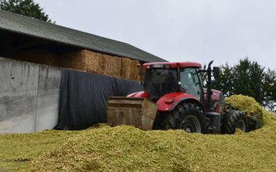 Mycotoxines des maïs ensilage en Bretagne : Résultats du 1er Observatoire